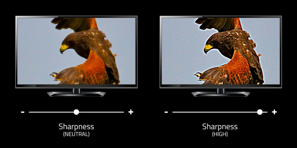 With its bright edge enhancement and high contrast, the image on the right may initially appear to have more detail, but these false details actually obscure the real details that are preserved in the image on the left with no edge enhancement. We believe that the real details of any source—video, audio, or otherwise—should be as faithfully reproduced as possible. [hawk photo by Tony Hisgett]